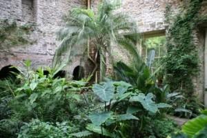 Aberglasney Garden