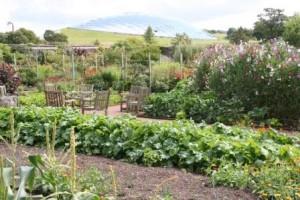 Botanic Garden Wales