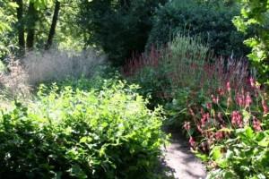 Garten Chris Bruinsma