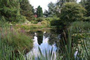 Alt Blick auf Teich